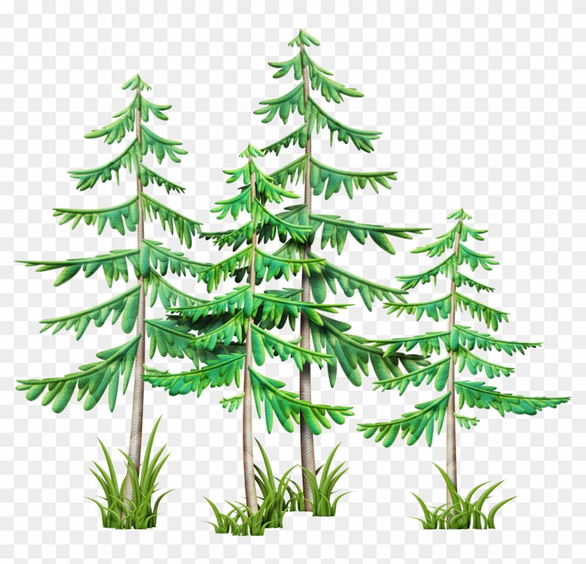 Clip Art, Camping Stuff, Branches, Pine, Mountain, - Christmas Tree #427053