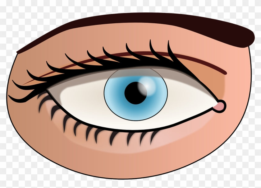 Eye Face Human Body Blue Png Image - Parts Of The Body Eye #427520