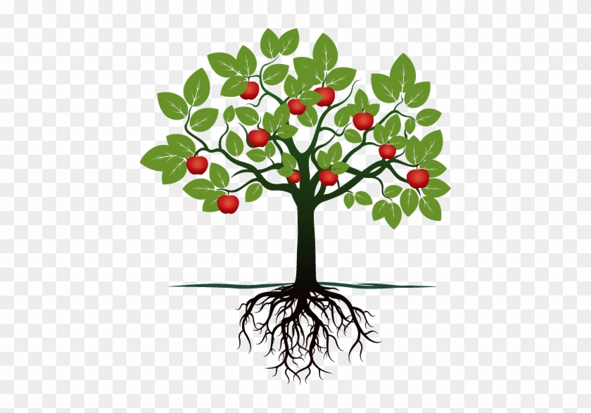 Fruit Tree With Roots Free Transparent Png Clipart Images Download