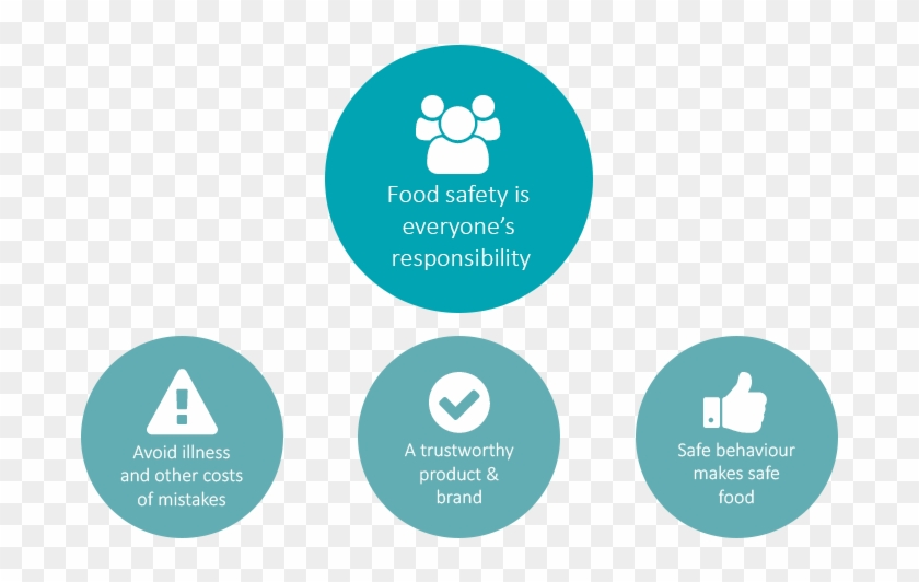 Food Safety Is Everyone's Responsibility - Food Safety #429210