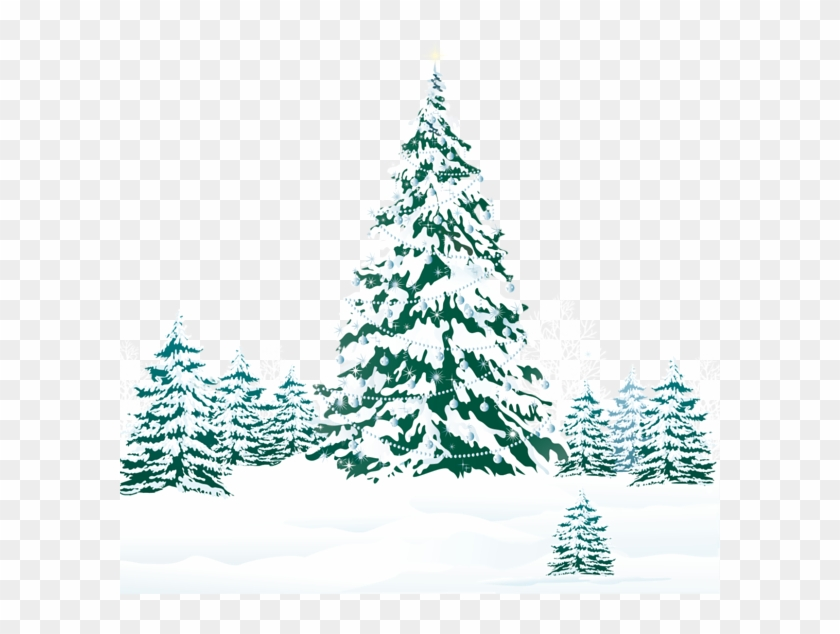 snowy winter ground with trees png clipart image teal christmas tree png