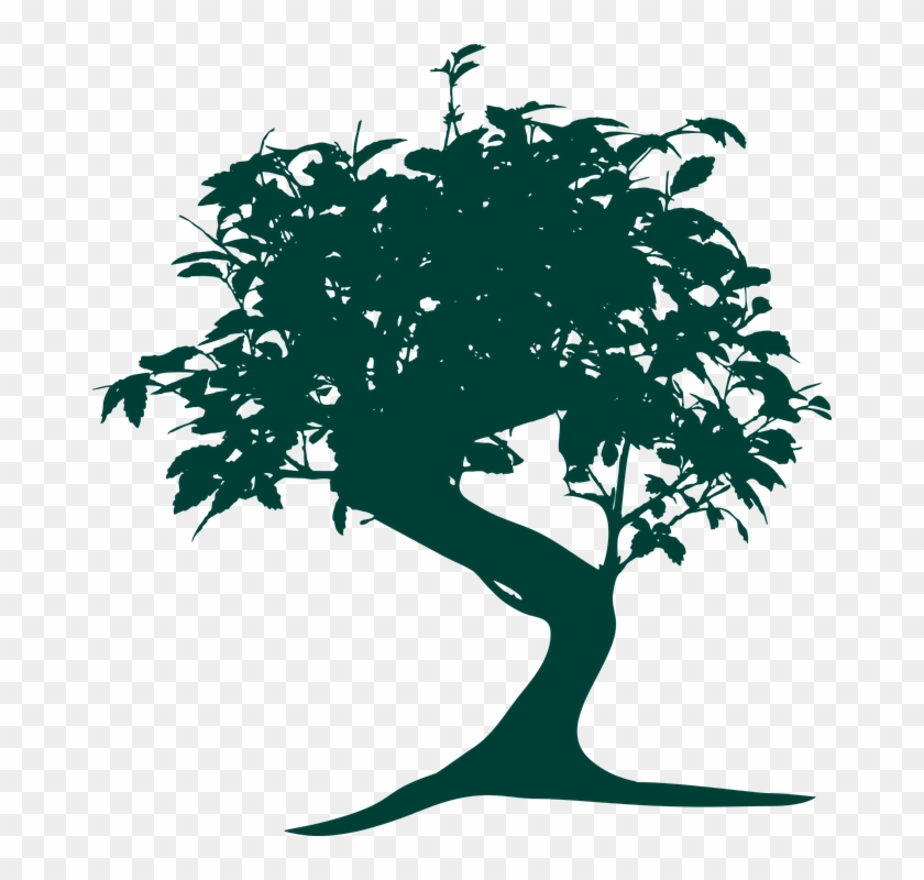 Mood Pictures, Japanese Tree, Qv - Bonsai Tree Vector Png #431343