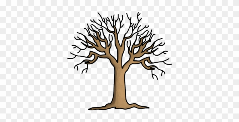 graphic about Printable Tree Trunk titled Printable Tree Without the need of Leaves Coloring Website page Down load