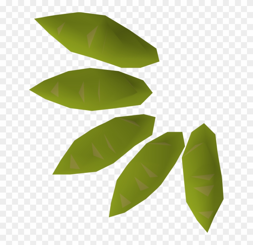 A Willow Seed May Be Grown Into A Willow Tree Using - Willow Tree Seed #433099