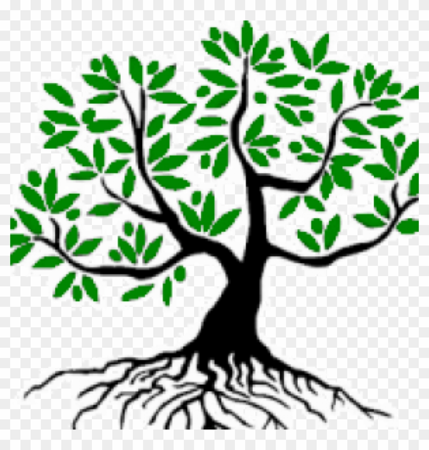 Good Tree شجرة طيبة Olive Tree Clip Art Free Transparent Png Clipart Images Download
