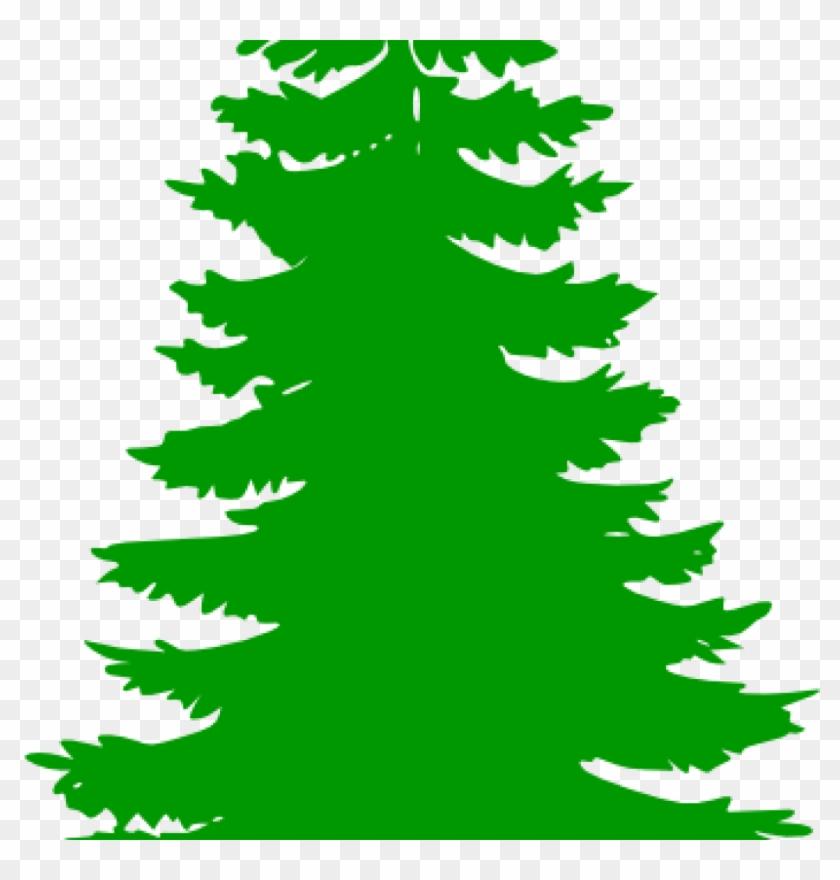 pine tree clip art pine tree clip art at clker vector pine tree rh clipartmax com pine tree clipart images pine tree clip art silhouette