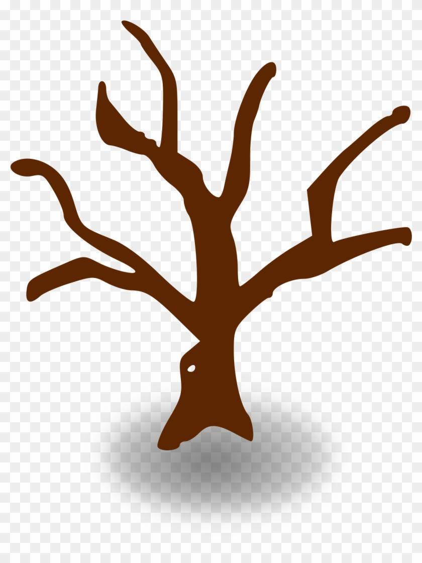 Big Image - Tree Graphic Organizer Template #440062
