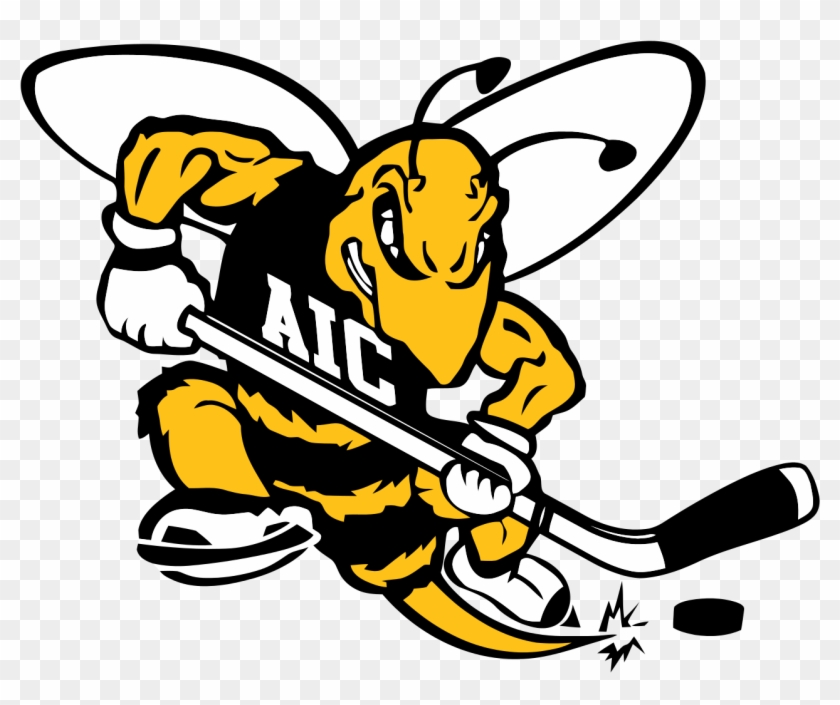Aic Yellow Jackets - American International Yellow Jackets Hockey #440387