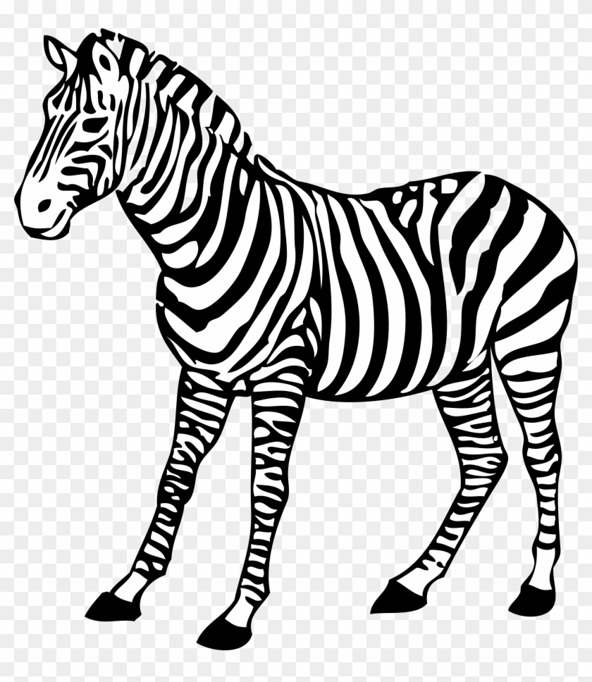 zebra clipart line drawing zebra black and white free