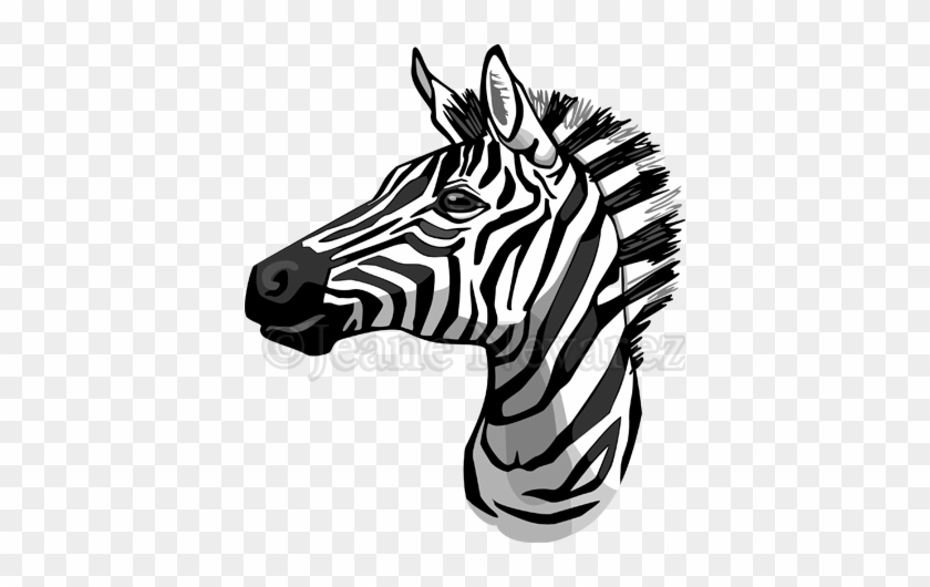 Zebra Face Clip Art - Drawing Of A Zebra Head - Free ...