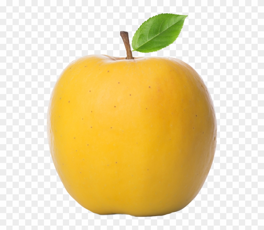 A New Sweet, Crispy Apple With Exceptional Flavor, - Apple #443151