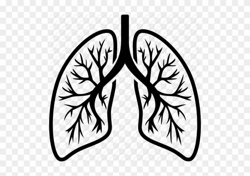28 Collection Of Lungs Clipart