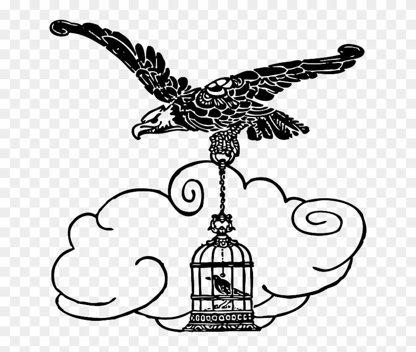 Cartoon Eagle Birds Bird Flying Animal