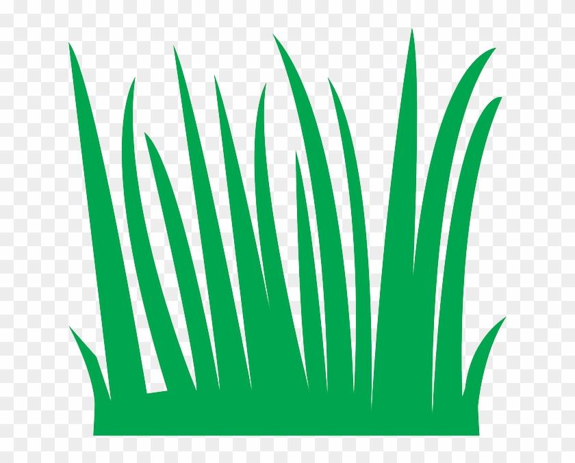 House, Grass, Break - Cartoon Blades Of Grass #454509
