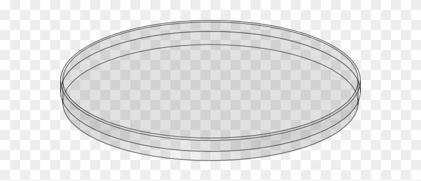 Petri Dish Clipart - Petri Dish No Background #458391