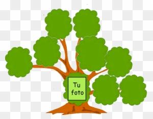 You Might Also Like Arbol Genealogico Para Dibujar Free