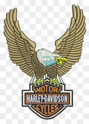 picture about Printable Harley Davidson Logo identify Harley Davidson Printable Stencils 756 X 972 778 Kb - Harley