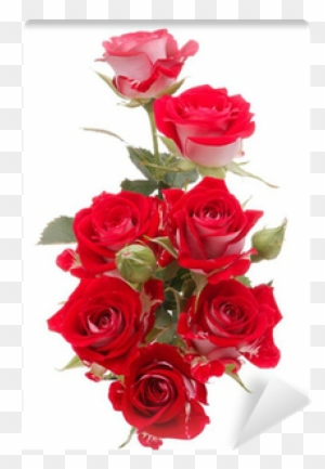 Rose Flower Bouquet Png Flowers Healthy