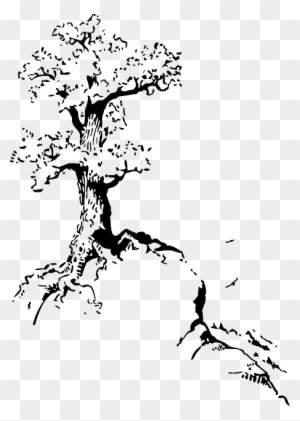 Top Outline Silhouette Tree Roots White Quotes About Trees