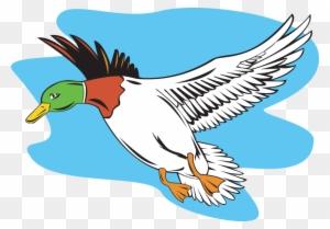 Silhouette Cartoon Birds Duck Ducks Side