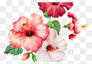 Flower Poppy Color Clip Art Turquesa Flores Azul Png Free