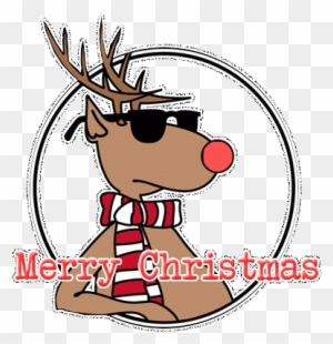 Best Best Photography Logos Cool Reindeer Sunglasses - Funny Merry ...