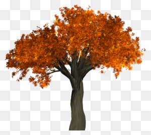 Autumn Tree Clipart Transparent Png Clipart Images Free Download Clipartmax