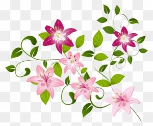 Pink Flower Background Png
