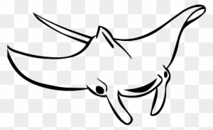Free Manta Ray Coloring Page Manta Ray Black And White Free Transparent Png Clipart Images Download