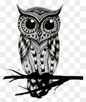 Owl Clipart Black And White Transparent Png Clipart Images Free Download Page 2 Clipartmax