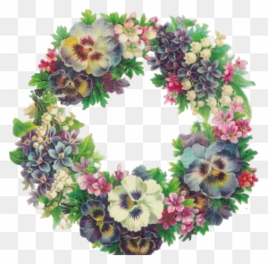 Tube Fleur Orchidee Gif De Fleur Blanche Free Transparent Png