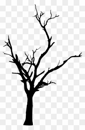 Cartoon Twig Youtube Tree Branch Twig Full Size Png