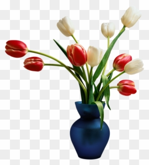 Flowers In Vase White And Red Colour Tulips With Leaves - Beautiful on flowers in christmas, flowers in beaker, flowers in canister, flowers in spring, flowers in a cup, flower arrangements, flowers in pot, flowers in water, flowers in basket, flowers basket, flowers in candle holder, flowers in goblets, flowers in purse, flowers in garbage can, sympathy flowers, flowers in painting, flowers in glass, exotic flowers, flowers plants, flower plants, flowers in crystal, artificial flowers, flowers in pitcher, flowers in wall, flowers in wash basin, flowers in planter,