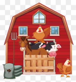 animal barn farm hen chicken sitting basket animal chicken