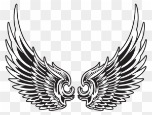 Eagle Wings Clipart Transparent Png Clipart Images Free Download