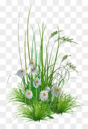 flower garden clipart transparent png clipart images free download clipartmax flower garden clipart transparent png