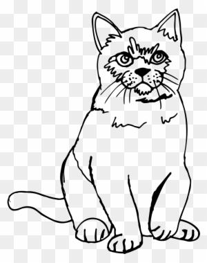 cat line art drawing warriors sketch cat head art free Chimp Brain Size cat line drawing clip art cat sketch