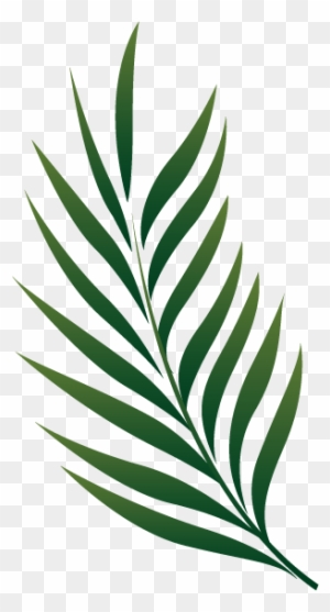 Tropical Leaves Clipart Transparent Png Clipart Images Free Download Clipartmax Find over 100+ of the best free tropical leaves images. tropical leaves clipart transparent
