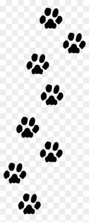 Dog Paw Print Clip Art Transparent Png Clipart Images Free Download Clipartmax Use it in your personal projects or share it as a cool sticker on tumblr, whatsapp, facebook messenger, wechat, twitter or in other messaging apps. dog paw print clip art transparent png