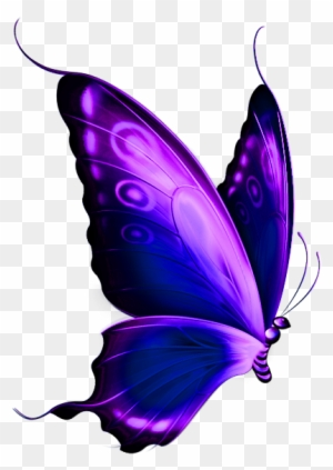 Purple Butterfly Clipart Free Clip Art Library Purple And Blue