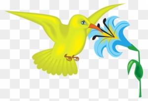 Colorful Little Bird SVG Vector, Colorful Little Bird Clip art - SVG Clipart