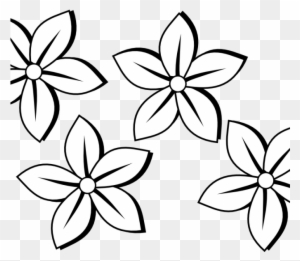 Colored pencil clipart black and white transparent png clipart outlines of flowers for colouring sunflower clipart flowers clipart black and white mightylinksfo