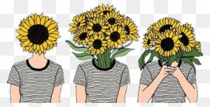 Flowers Girasoles Tumblr Girls Hipster Sunflower Aesthetic Free