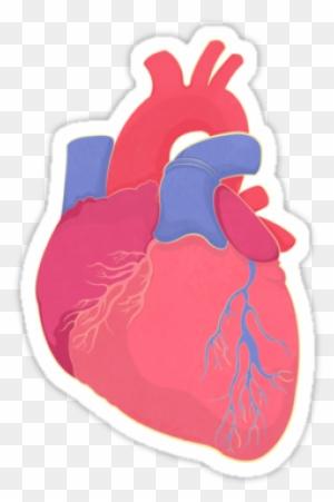 Aqua Heart Clip Art
