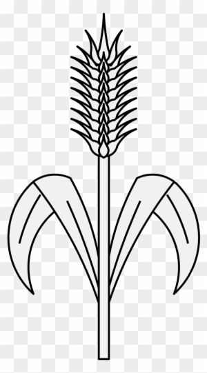 Pdf Plant Wheat Drawing Free Transparent Png Clipart Images Download
