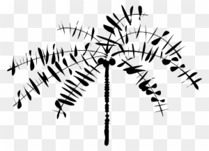Coconut Tree Clipart Black And White Transparent PNG Clipart Images