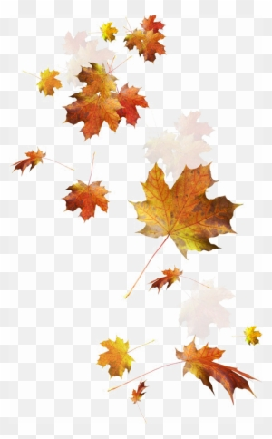 Fall Autumn Clip Art Free Clipart Autumn Leaves Border