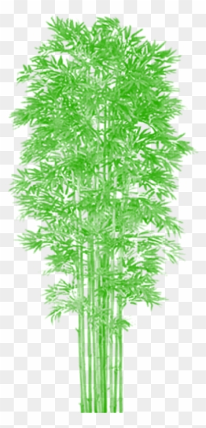 Bamboo Tree Clipart, Transparent PNG Clipart Images Free